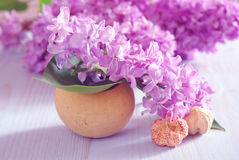 Lilac flower purple background romantic Stock Photo