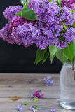 Lilac flowers on black. Fresh Lilac flowers  in glass vase on table Stock Images