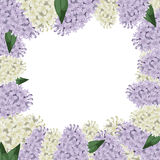 Lilac flowers border Stock Images