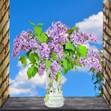 Lilac Flowers Bouquet Royalty Free Stock Photography