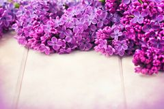 Lilac Flowers Bouquet Royalty Free Stock Photos