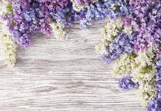 Lilac Flowers Bouquet on Wooden Plank Background, Spring. Purple Blooming Bunch, Branch over Wood Texture