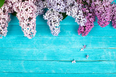 Lilac Flowers Bouquet on Wooden Plank Background Royalty Free Stock Photos
