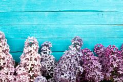 Lilac Flowers Bouquet on Wooden Plank Background Royalty Free Stock Photography