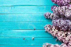 Lilac Flowers Bouquet on Wooden Plank Background Stock Image