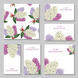 Lilac flowers bouquets background set Stock Photos