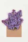 Lilac  flowers in a brown envelope Stock Photos