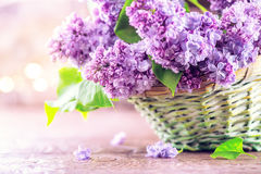 Lilac flowers bunch in a basket over blurred wood background Stock Photos