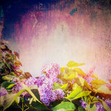 Lilac flowers bunch over vintage texture background Stock Images
