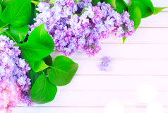 Lilac flowers bunch on white planks wood background Royalty Free Stock Photo