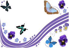 Lilac flowers, butterflies and curls Royalty Free Stock Image