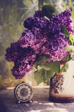 Lilac flowers in a ceramic pot Stock Photos