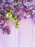 Lilac flowers composition color vintage pink wooden spring beautiful. Lilac flowers spring wooden background blooming decoration design composition season stock photography
