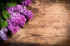 Lilac flowers in corner of dark brown wood table Royalty Free Stock Image