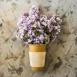 Lilac flowers in a cup for coffee. A bouquet of lilac in a crafted cup for coffee on a gray background. Spring creative concept Stock Images