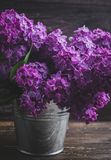 Lilac flowers in decorative tin bucket stock photography