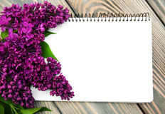 Lilac flowers with empty note Stock Images
