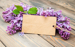 Lilac flowers with empty tag Stock Photo