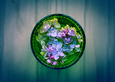 Lilac flowers in glass. Royalty Free Stock Images