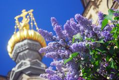 Lilac flowers and golden church cupolas Royalty Free Stock Image
