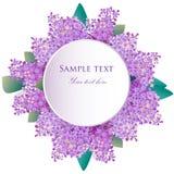 Lilac flowers greeting card, invitation Stock Photo