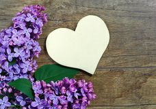 Lilac flowers and heart stock images