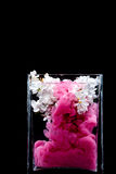 Lilac flowers and ink swirling in water in a glass vase on a black background. Picturesue lilac flowers and colorful ink swirling in water in a glass vase on a Royalty Free Stock Images