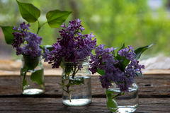 Lilac flowers in jars on the wooden window sill.  Stock Images