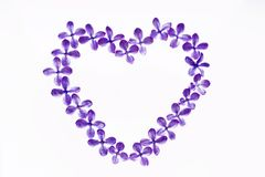 Lilac flowers laid out on a white background in the shape of a heart. Contrast image. royalty free stock photography