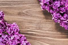 Lilac flowers in the left down and right up corners on the brown wooden surface. Sharp focused nice photo royalty free stock photo