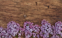 Lilac flowers on an old wood Royalty Free Stock Images