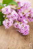 Lilac flowers over wooden background Royalty Free Stock Images
