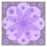 Lilac flowers on purple background Royalty Free Stock Images