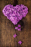 Lilac flowers in shape of heart Stock Image