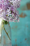 Lilac flowers in vase Royalty Free Stock Images