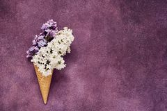 Lilac flowers in a waffle ice cream cone on violet background. Summer concept. Copy space, top view. Minimal summer flat lay composition royalty free stock images