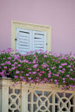 Lilac flowers and the wall. With that cream color balcony fence look very beautiful... this house is in Peschiera di Garda small nice place on lake Garda in Stock Photo