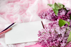 Lilac flowers and white place for text . greeting card. Royalty Free Stock Photography