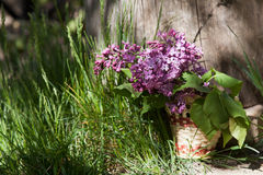 Lilac flowers in a wicker basket Royalty Free Stock Photo