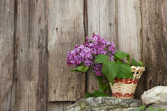 Lilac flowers in a wicker basket Royalty Free Stock Image