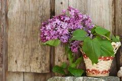 Lilac flowers in a wicker basket Stock Photo