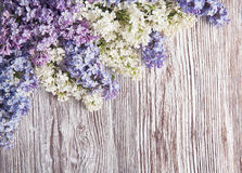 Lilac flowers on wood background, blossom branch on wood