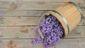 Lilac flowers in a wooden bucket on a wooden background Stock Images
