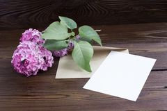 Lilac flowers on wooden table Stock Images