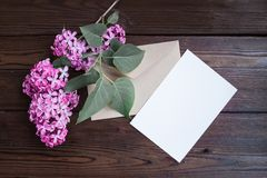 Lilac flowers on wooden table Stock Photos