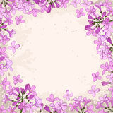 Lilac frame Royalty Free Stock Photography