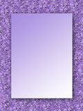 Lilac frame with space for the text. Stock Images