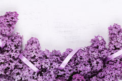 Lilac frame Royalty Free Stock Image