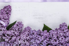 Lilac frame Royalty Free Stock Images