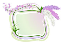 Lilac framework. Gentle framework with a blossoming lilac Stock Images